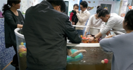 望城区大型高档小区婴儿游泳馆带资源转让