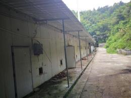 一万平米仓库厂房出租