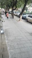 转让蔡甸区蔡甸城区50平米商业街店铺